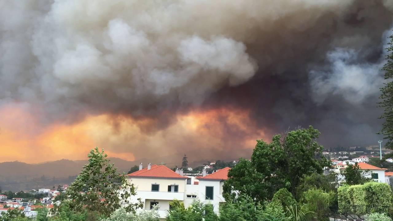 Monitoring of fires in Portugal for EMERCOM (Russia) (13.08.16)