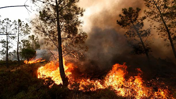 Monitoring of fires in Portugal for EMERCOM (Russia) (15.08.16)
